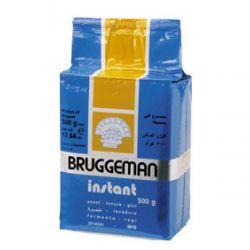 Bruggeman instant gist 500gr